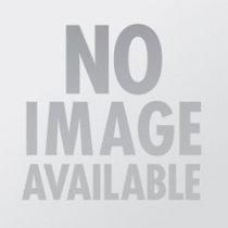 Lejay Creme de Cassis Liqueur Miniature 5cl
